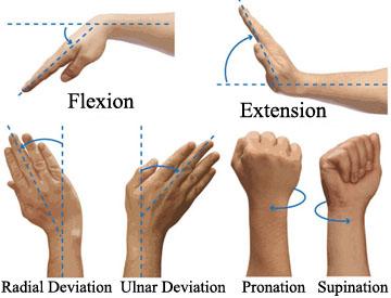 Wrist Postures