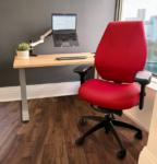 Home Office - Virtual School Ergonomics