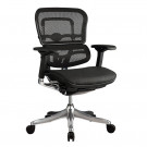 Ergo Elite Mesh Chair