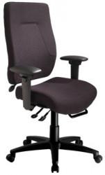 eCentric Executive Plus Size Ergonomic High Back Chair