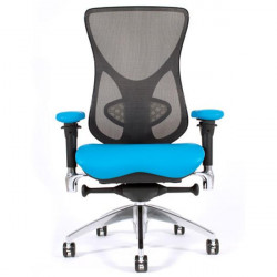 Aircelli Mesh Back Ergonomic Chair
