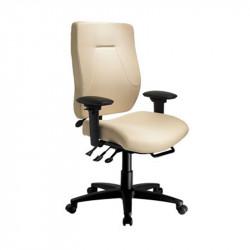 eCentric Executive High Back Ergonomic Chair
