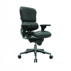 ErgoLogic Tech Chair - Leather Seat and Back