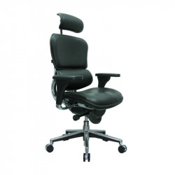 ErgoLogic Tech Chair - Leather Seat, Back and Headrest