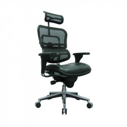 ErgoLogic Tech Chair - Mesh Back and Headrest - Leather Seat