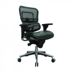 ErgoLogic Tech Chair - Mesh Back - Leather Seat