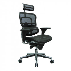 ErgoLogic Executive Tech Chair - Mesh Seat, Back and Headrest